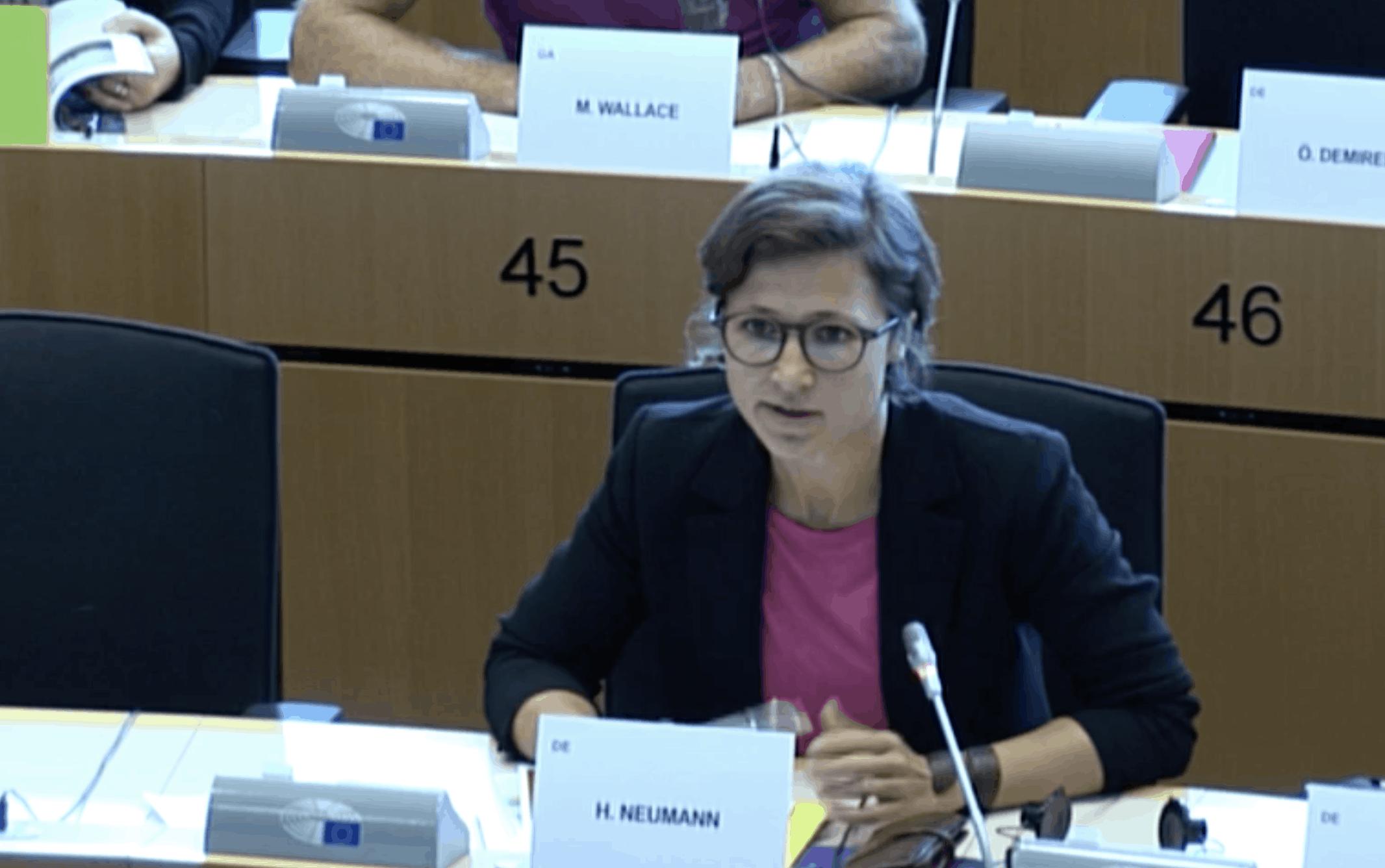 Hannah Neumann im SEDE Ausschuss (© Mediathek Europäisches Parlament)