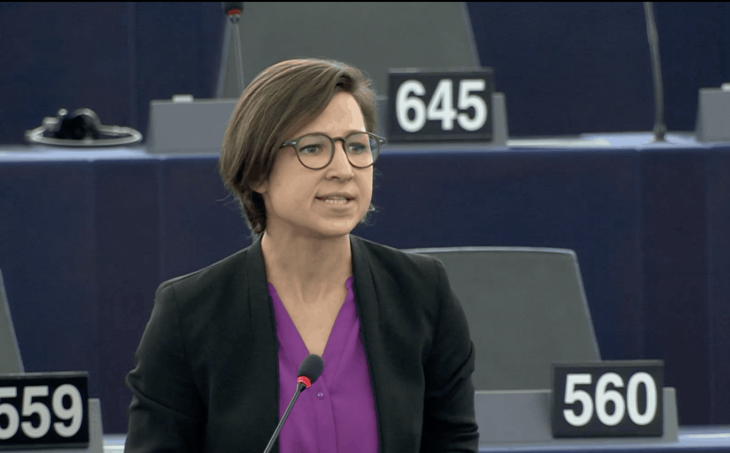 Hannah Neumann bei der Rede im Parlament