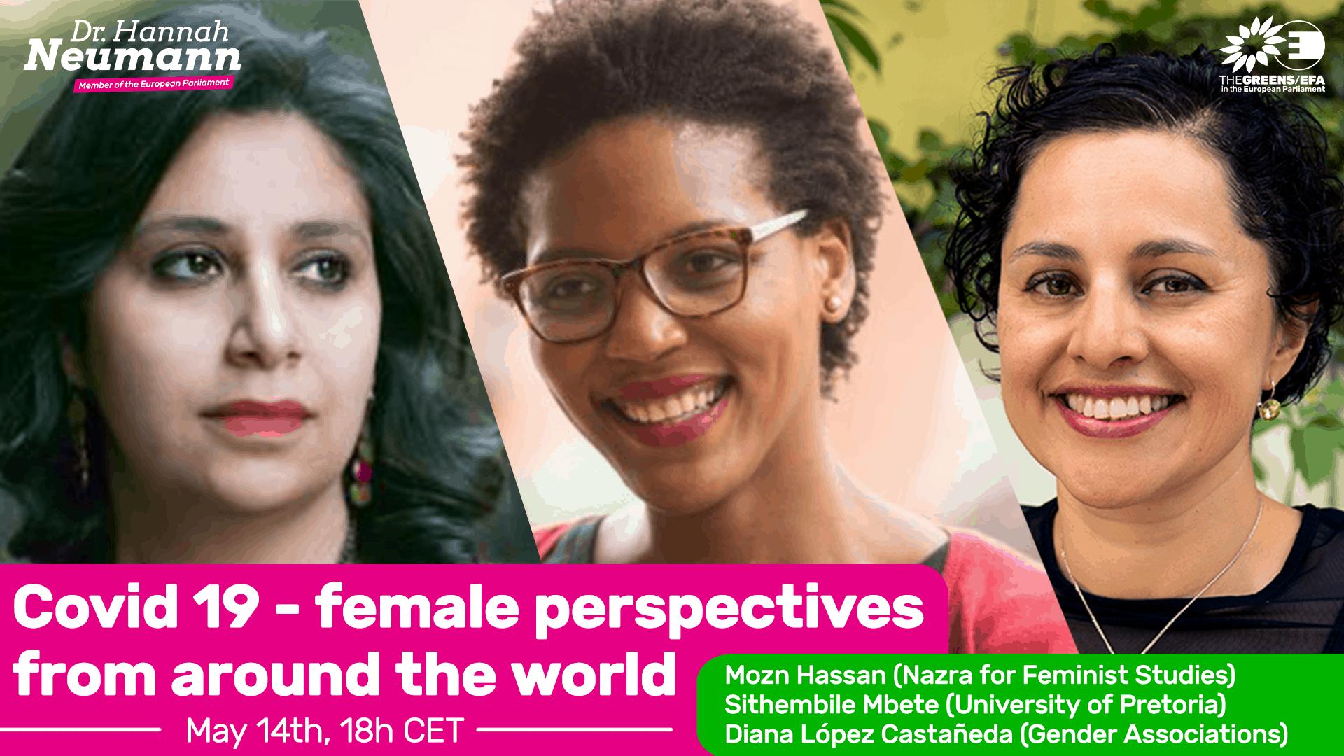 Feministische Perspektiven auf die Corona-Pandemie - mein Webinar