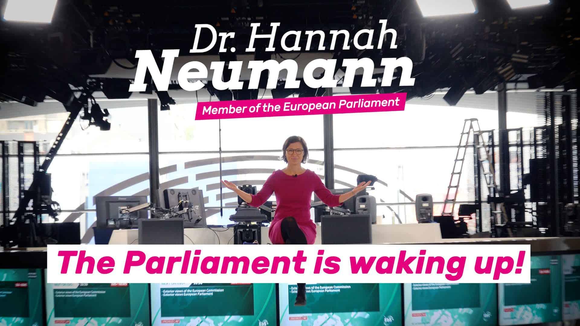Das Europaparlament erwacht! - Das EP in Zeiten von Corona