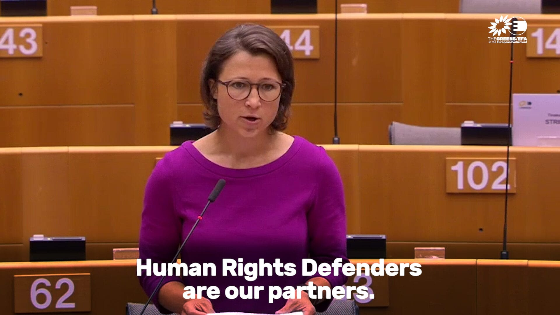 """""""Herr Borell, passen Sie das Visa-Handbuch an!"""" - Meine Plenarrede zum jährlichen Menschenrechtsbericht"""