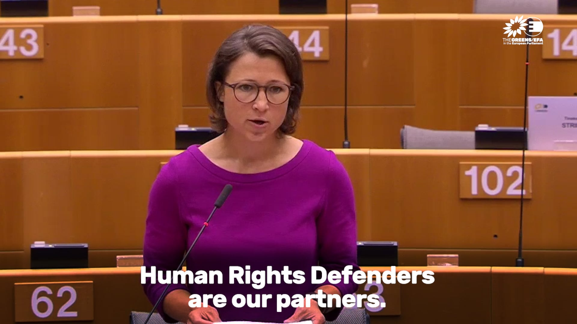 """""""Herr Borrell, passen Sie das Visa-Handbuch an!"""" - Meine Plenarrede zum jährlichen Menschenrechtsbericht"""